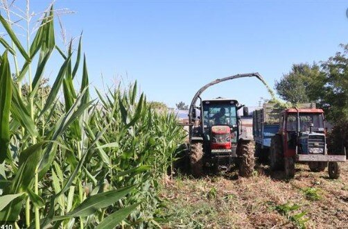 Ziraat Bankası Tarımsal Kredi Faizleri Listesi