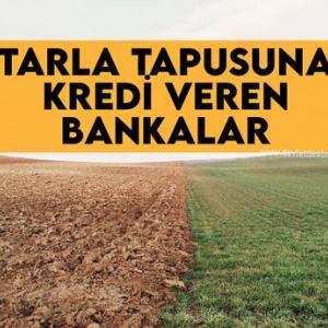 Tarla Tapusuna Kredi Veren Bankalar (DÜŞÜK FAİZLİ)